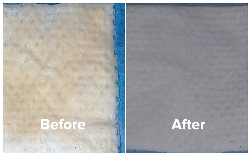 See the biofilm wiped off of tongue before and results after total cure bad breath treatment